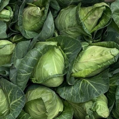 Tops Fruits Pointed Cabbage