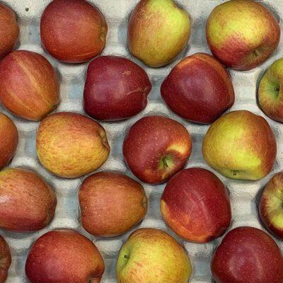 Apples Braeburn