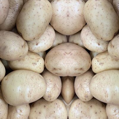 Potatoes Baking