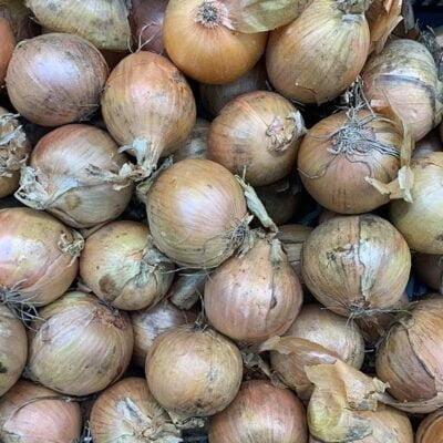 Onions Shallot
