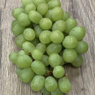 Top Fruits - Grapes Seedless Green