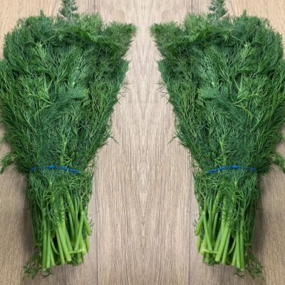 Top Fruits - Herbs_Dill