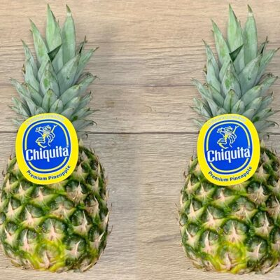 Top Fruits Product _Pineapple