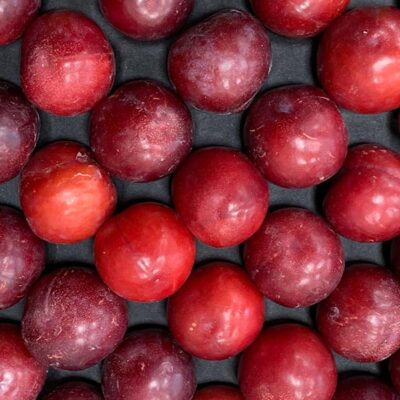 Top Fruits Product _Red plums