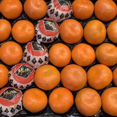 Top Fruits - Easy peelers Nadorcott