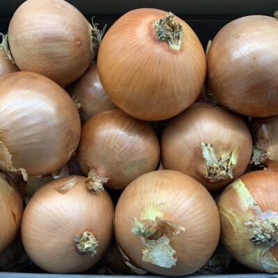 Top Fruits Spnaish Onions