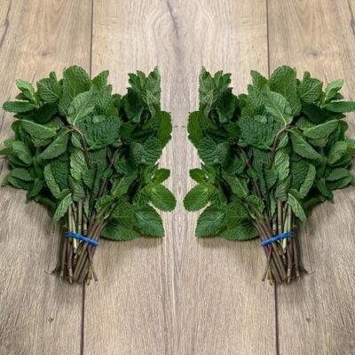 Top Fruits - Herbs_Mint